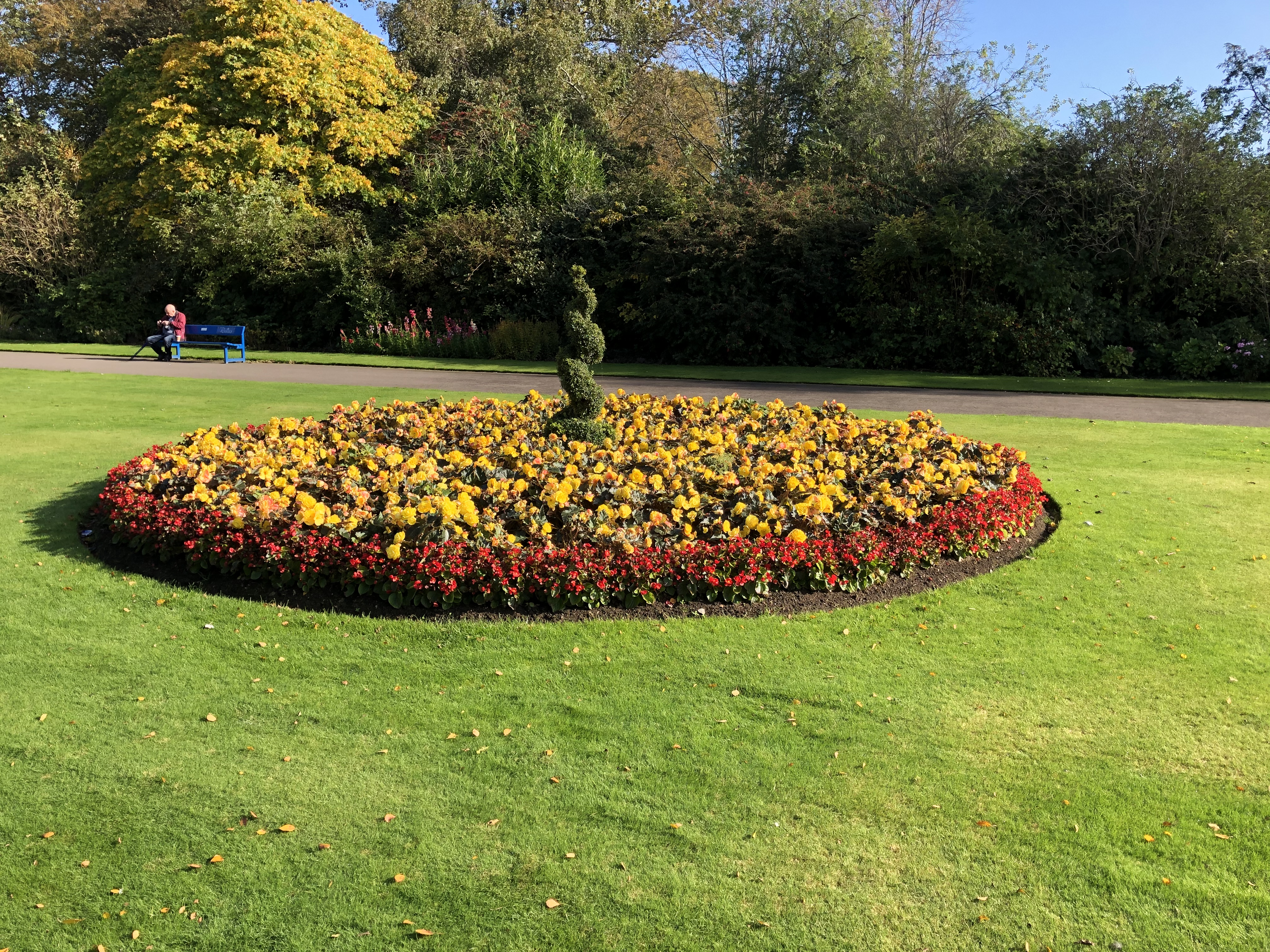 Flower arrangement in Seaton park